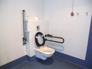 Adapted toilets