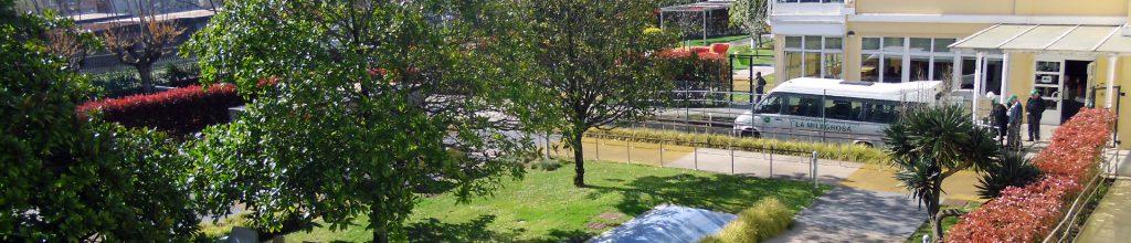 Gerontologic garden
