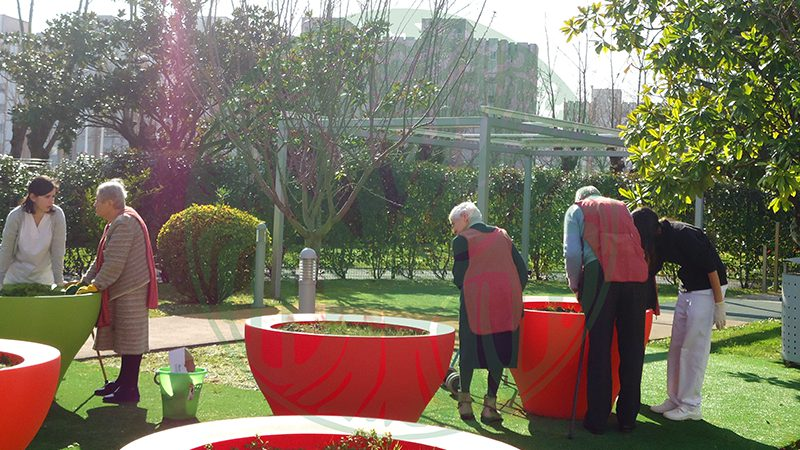 Day Care Centre La Milagrosa. Horticulture